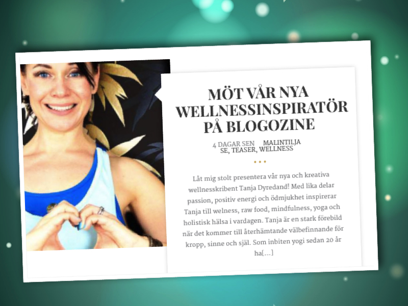 blogozine-ny-wellness-inspirator