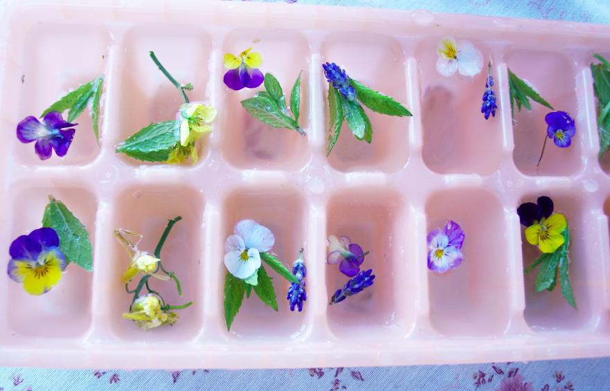 iskuber-diy-atbara-blommor