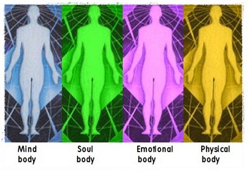våra-fyra-olika-kroppar-jagtid