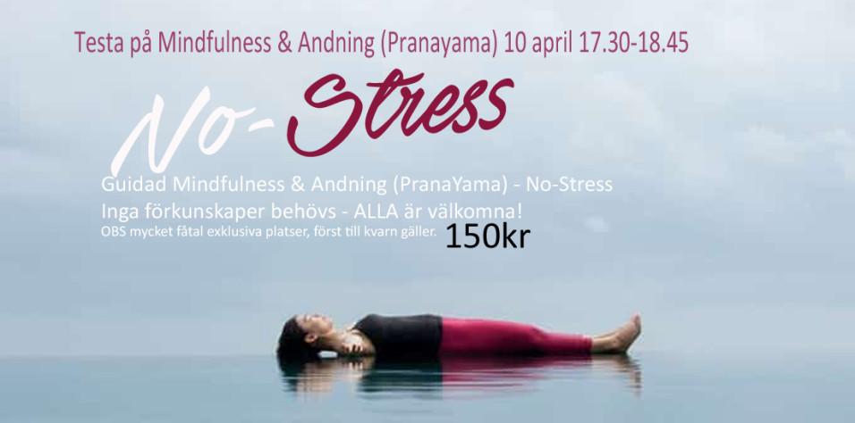 No stress tanja dyredand coach mindfulness 10