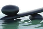 mindfulness sten tanja dyredand coach