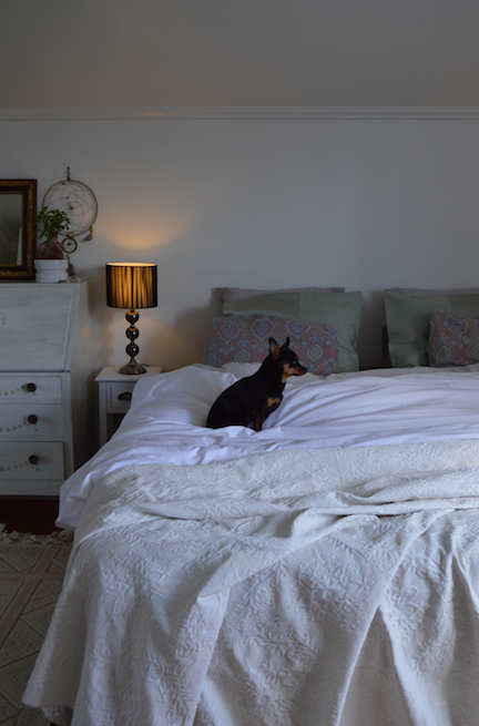 master bedroom vansovagen orby dyredand