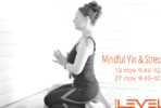 yin-yoga-tanja-dyredand-2016-studio-levels