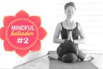 tanja-dyredand-kalender-2017-mindfulness