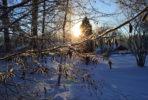 vinter-2-vanliga-villan