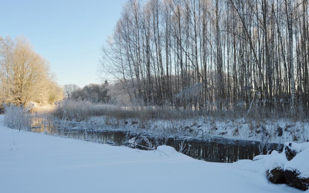 vinter-7-vanliga-villan