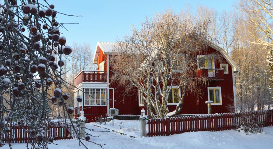 vinter-vanliga-villan-tanja-dyredand-2017