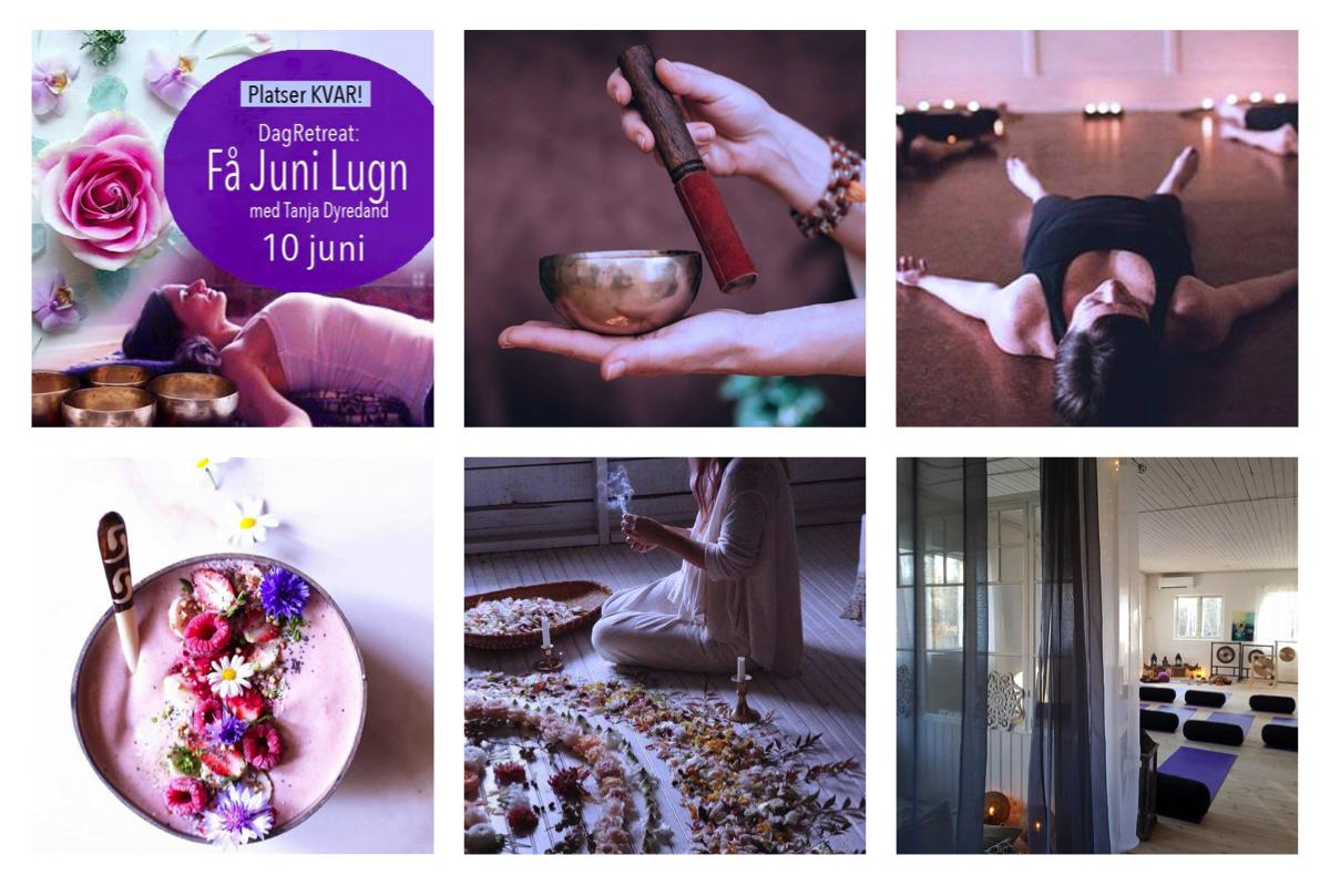 junilugn-yoga-event-tanja-dyredand