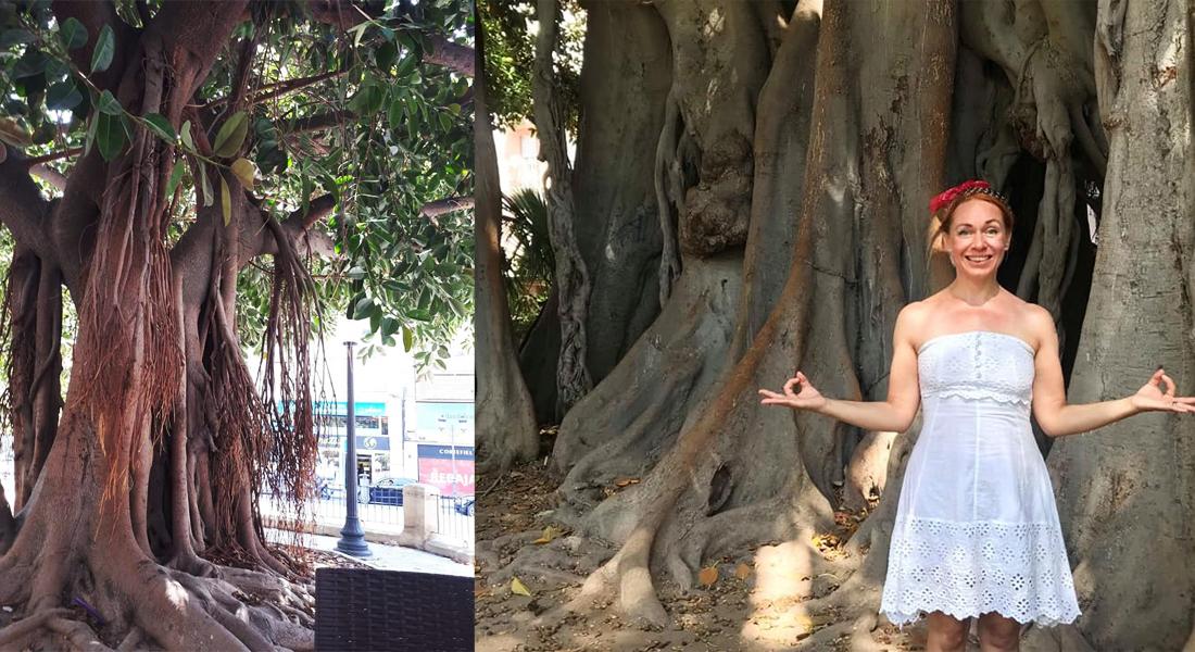 alicante-yoga-mindfulness-stresshantering-tanja-dyredand
