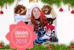 julkalender-tanja-dyredand-2018-snall-vanlighets-kalender