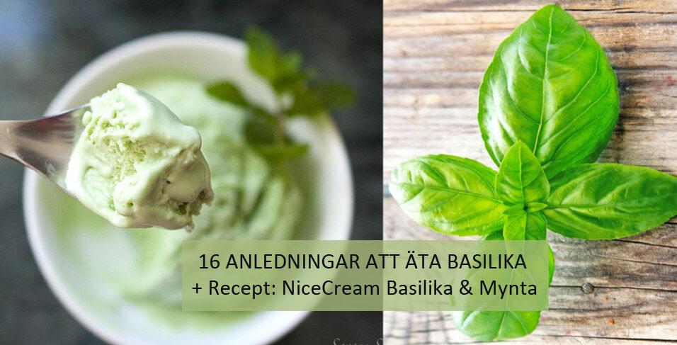 basilika-recept-nice-cream-tanja-dyredand-stressaav-vanliga-villan